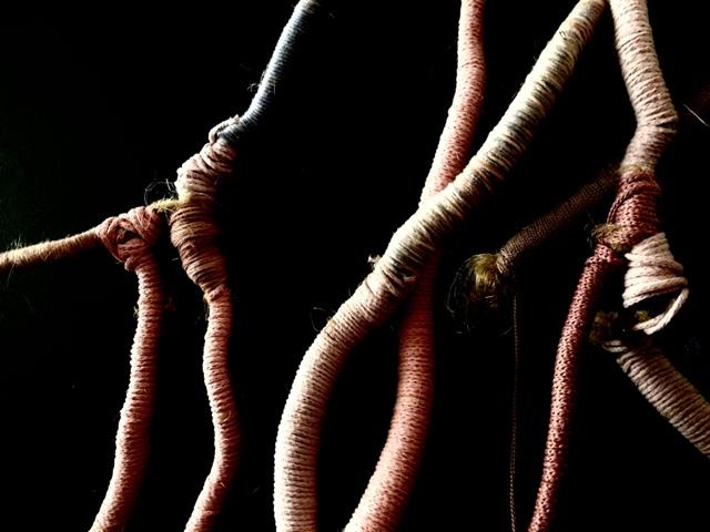 3-Egkrateia Roumpou, roots-detail-web